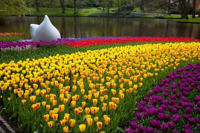 Hollandia